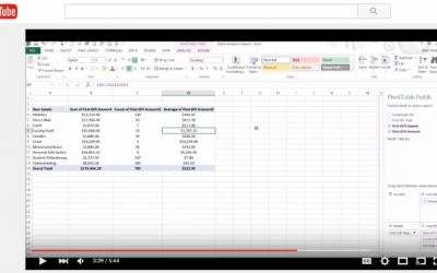 Analyzing New Donors Using Excel Pivot Tables (Part 1)